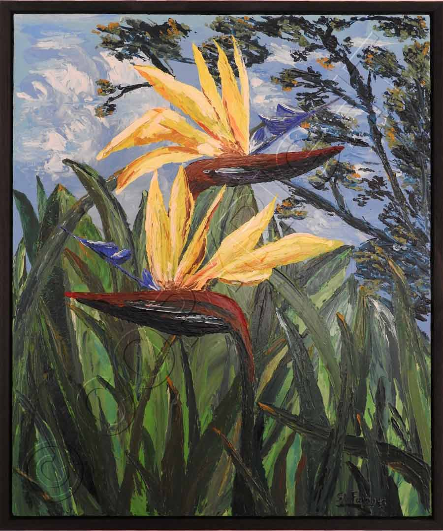 Garden Art Brisbane: Flower Paintings