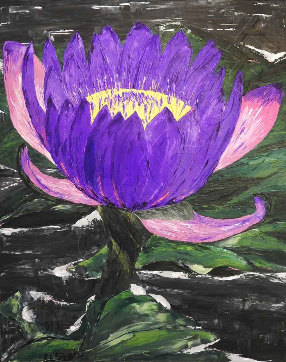Painting of Water Lily