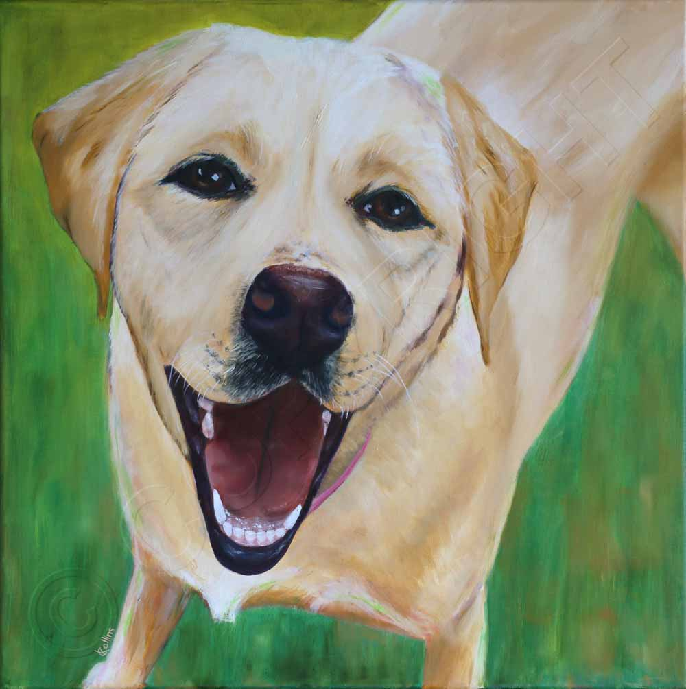 Painting of Labrador