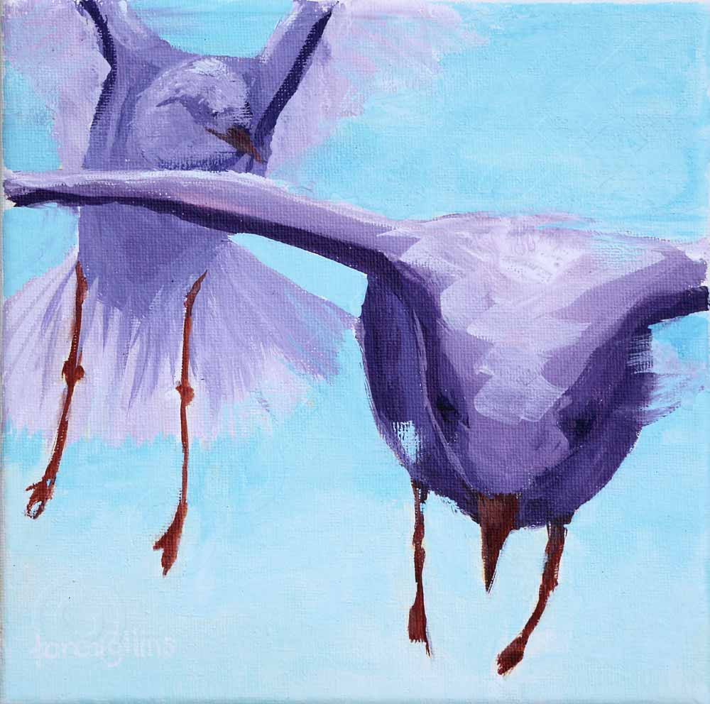 Painting of Seagulls